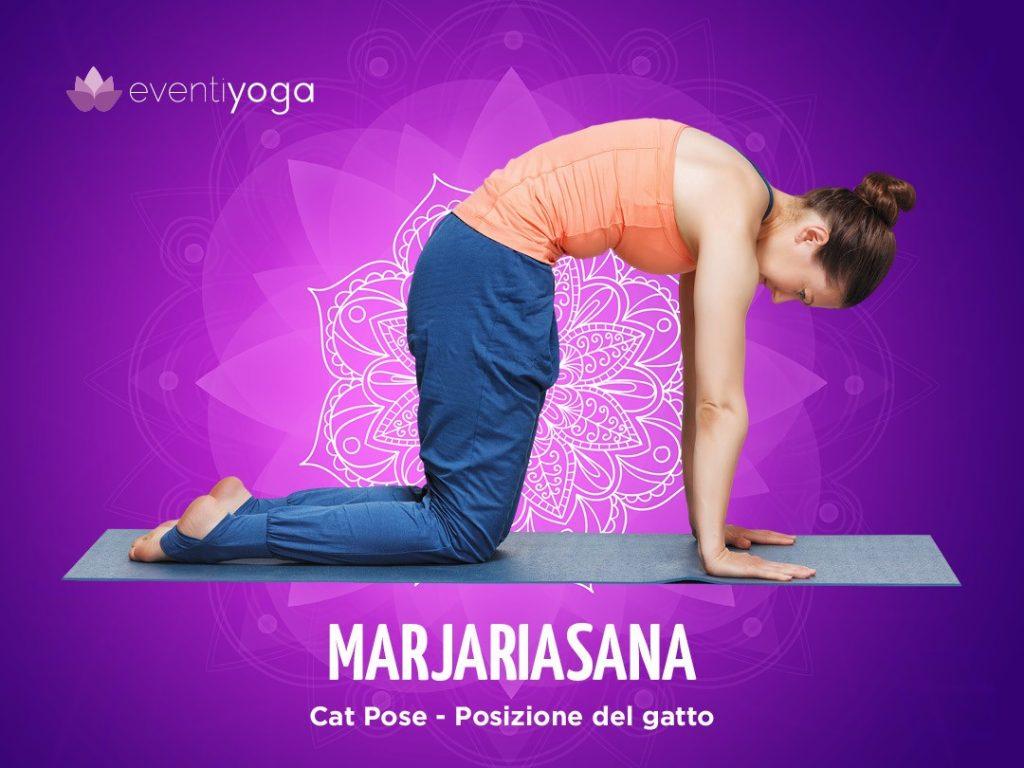 Marjariasana, posizioni yoga