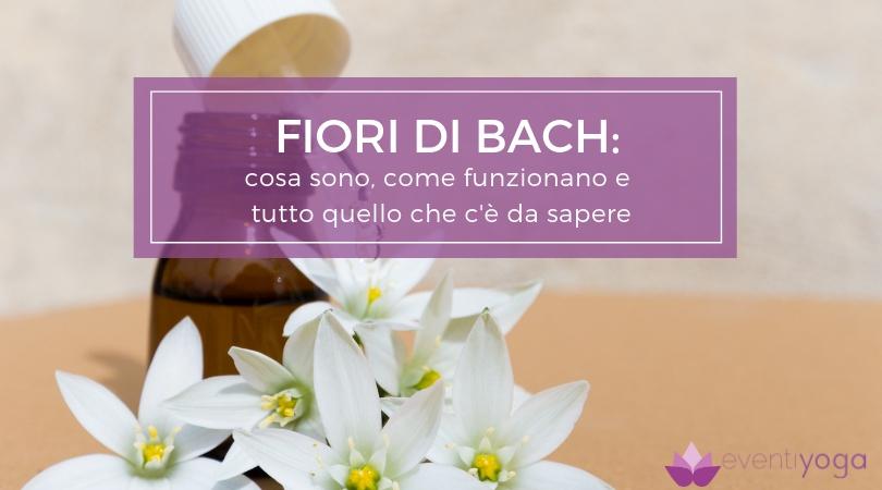 Fiori di Bach: cosa sono, come funzionano e tutto quello che c'è da sapere