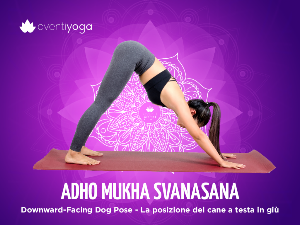 Dolore durante la pratica delle asana: Adho Mukha Svanasana