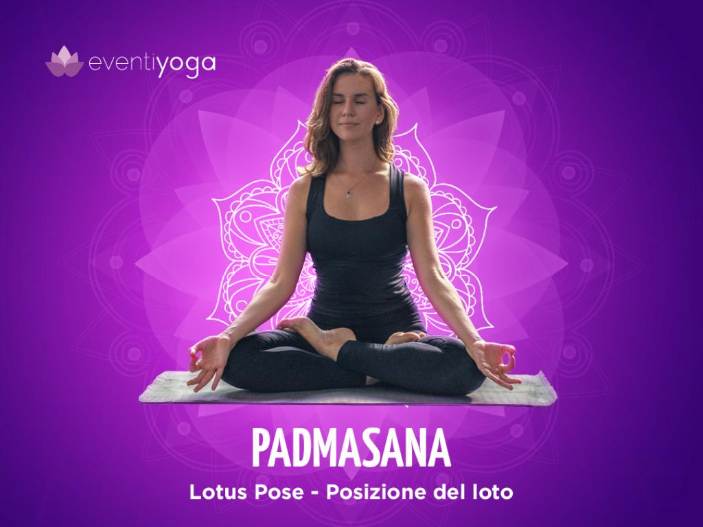 Padmasana yin yoga