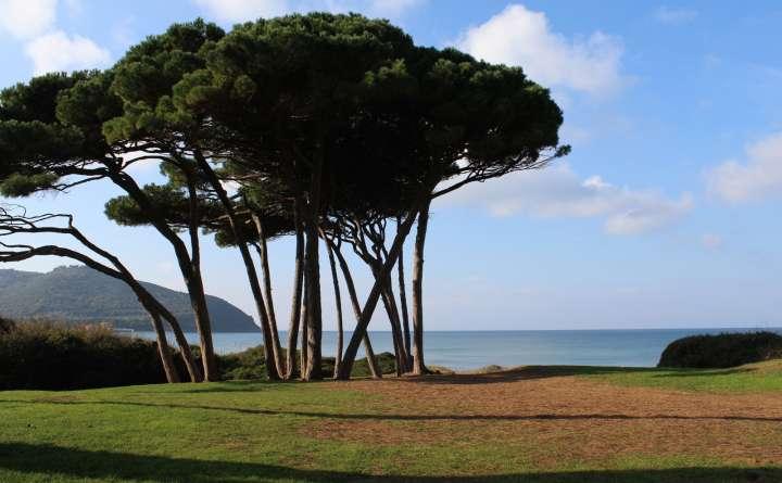 Ognisanti Yoga Toscana
